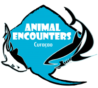 Logo van animal encounter Curaçao.