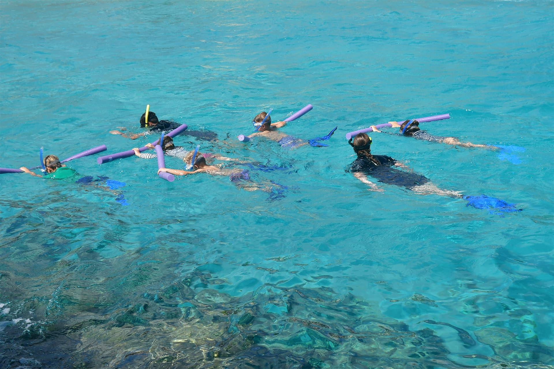 Kinderen genieten van het snorkelen tijdens de snorkel club in het Curaçao Sea Aquarium.