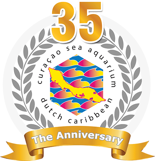 The logo of a 35 year anniversary of the Curaçao sea aquarium Dutch Caribbean.