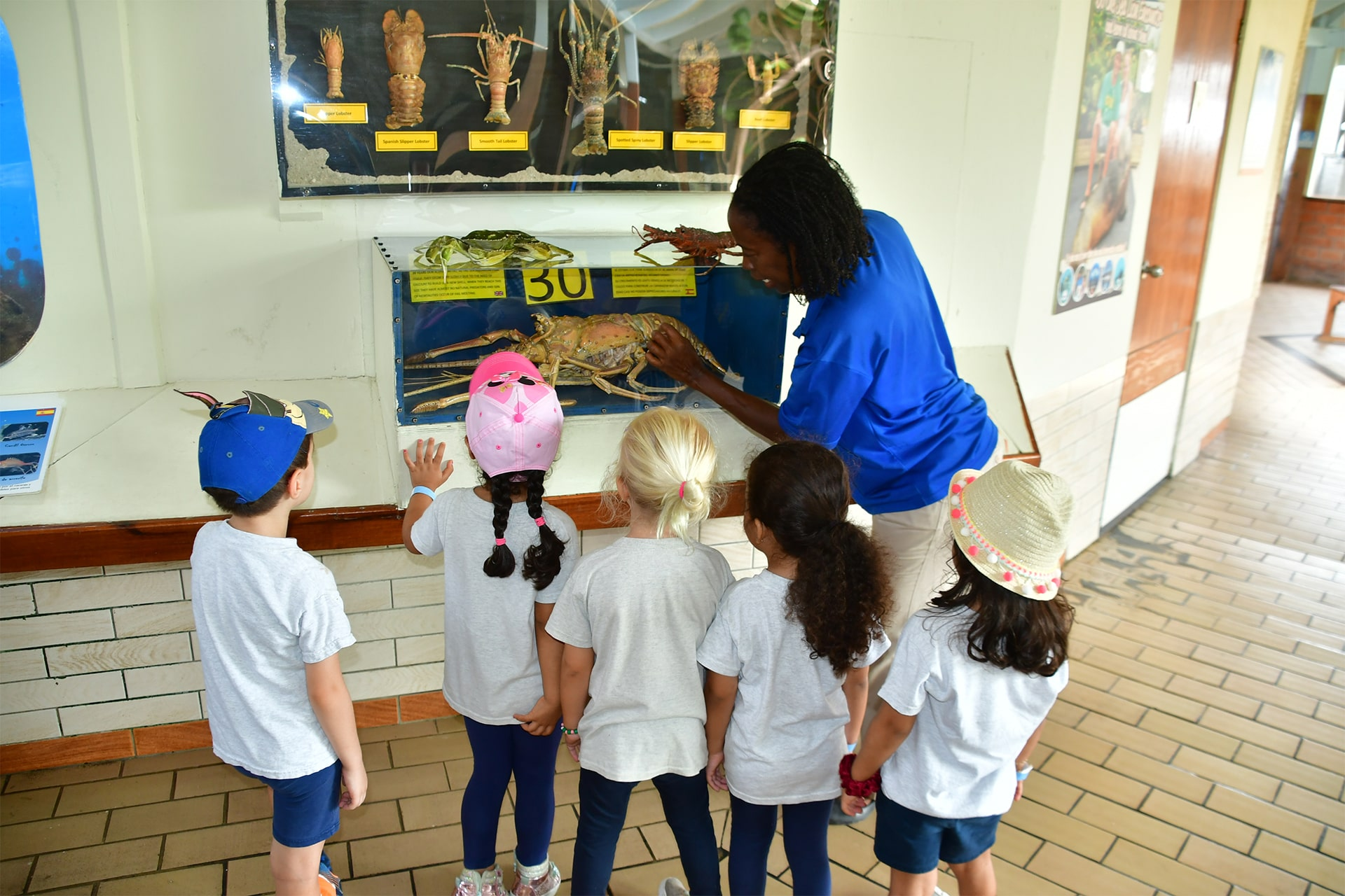 5 children watch and listen attentively to the explanations of sea animals from an attendant at the sea aquarium Curaçao.