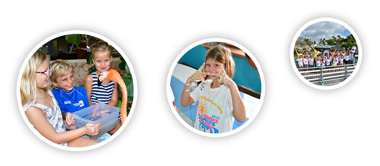 Curaçao Sea Aquarium faciliteert een vakantieplan met activiteiten voor kinderen om te leren.